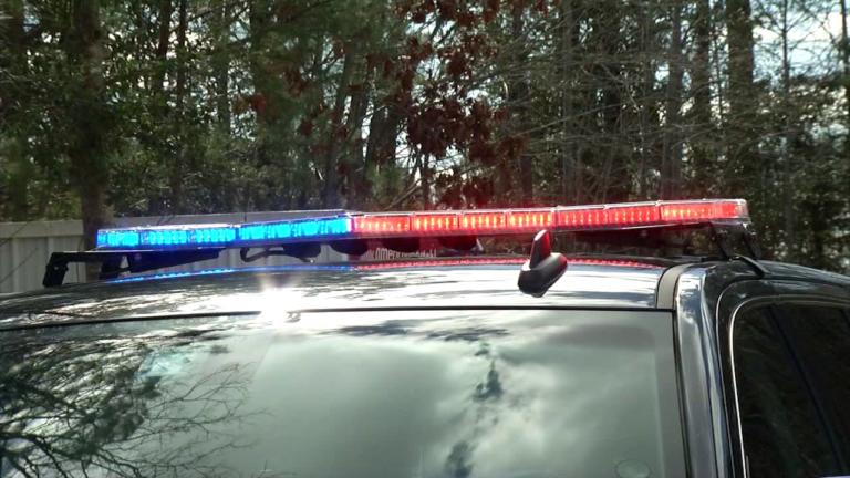 Police Lights 768x432