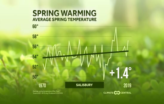 Spring Warming Sby